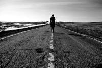 Дорога (Road) | art59.ru