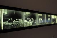 Выставка Виталия Пушницкого | art59.ru