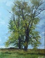 Осенние тополя | art59.ru