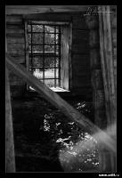 Черно-белые размышления | art59.ru